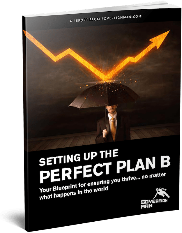 Perfect Plan B Guide