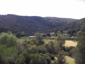 chile-farmland
