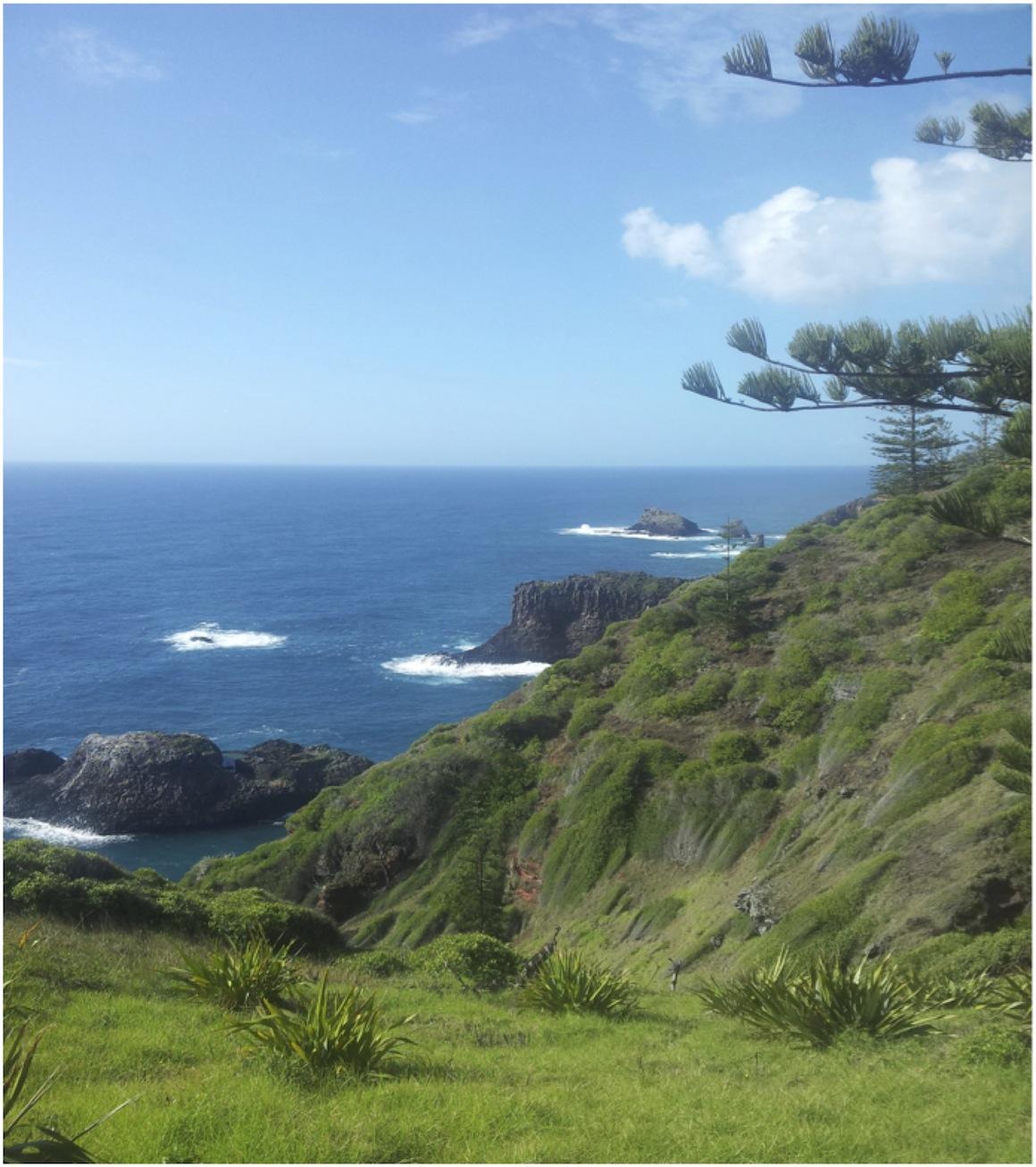 Norfolk Island Vista