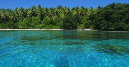 Marshall-Islands-Estate-Planning