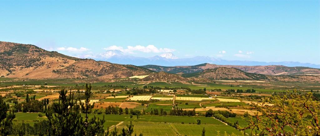 Chile Farms
