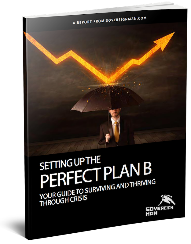 Perfect Plan B Guide